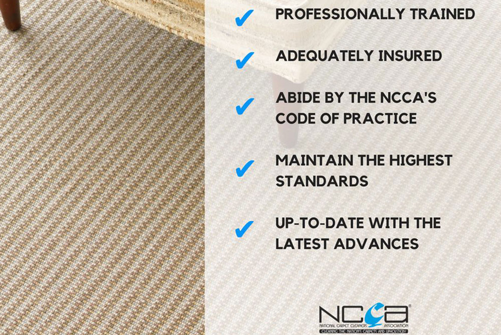 Wadebridge carpet cleaning